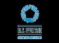 D.E. Systems